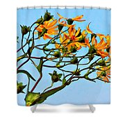 Party Girls Shower Curtain