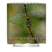 2 Peter 3 Verse 15 Shower Curtain