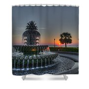 Pineapple Sunrise Shower Curtain