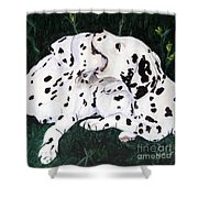 Playful Pups Shower Curtain