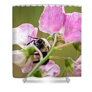 Pollination Nation II Shower Curtain