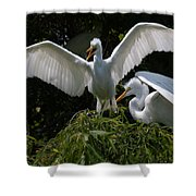 Prepare For Flight Shower Curtain