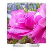 Pretty Pink Flower Shower Curtain