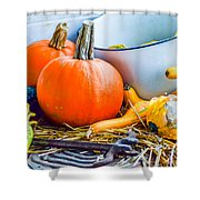 Pumpkins Decorations Shower Curtain