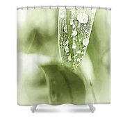 Raindrops On Grass Shower Curtain