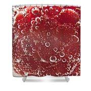 Raspberry Macro Shower Curtain