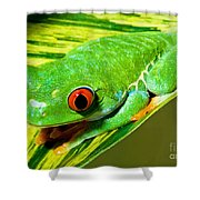 Red Eye Tree Frog Shower Curtain