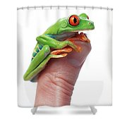 Red-eyed Tree Frog Agalychnis Callidryas Shower Curtain by Corey Hochachka