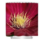 Yellow Fingers Shower Curtain