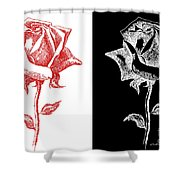 2 Red Rose Drawing Combo Shower Curtain