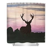 Red Stag At Dusk Shower Curtain