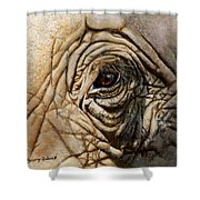 Reflections Of Africa Shower Curtain