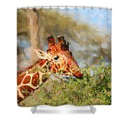 Reticulated Giraffe Kenya Shower Curtain