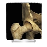 Right Hip Joint Male Shower Curtain