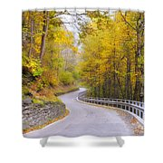 Road With Curves Shower Curtain