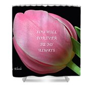 Romantic Pink Tulip Shower Curtain