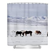 Ruby Mountain Winter Shower Curtain