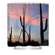 Saguaro Silhouettes Shower Curtain