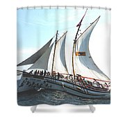 A Rolling Sea Shower Curtain