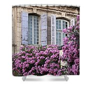 Saint Remy Windows Shower Curtain