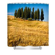 San Quirico D'orcia Shower Curtain