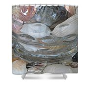 Shells In Bubble Bowl 2 Shower Curtain