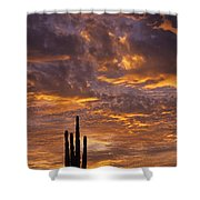 Silhouetted Saguaro Cactus Sunset At Dusk With Dramatic Clouds Shower Curtain