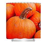 Small Pumpkins Shower Curtain