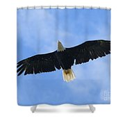 Soaring High 2 Hdr Shower Curtain