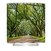 Southern Journey  Shower Curtain