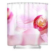 Spa Flowers Shower Curtain