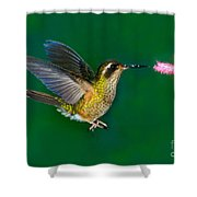 Speckled Hummingbird Shower Curtain