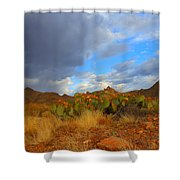 Springtime In Arizona Shower Curtain