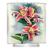 Stargazer Lilies Shower Curtain