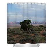 Still Life In The Desert Shower Curtain