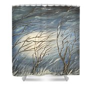 Storm  Shower Curtain
