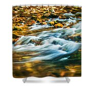 Stream Fall Colors Great Smoky Mountains Painted  Shower Curtain