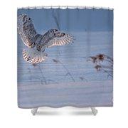 Sunlit Wings Shower Curtain
