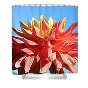 Sunny Center Shower Curtain