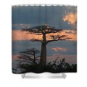 sunset in Madagascar Shower Curtain