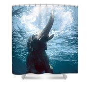 Swimming Elephant Shower Curtain