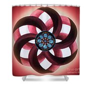 Synergy Mandala 3 Shower Curtain