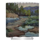 Teanaway River Shower Curtain