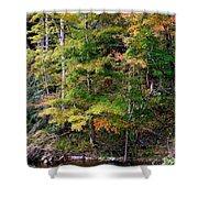Tennessee Autumn Stream Shower Curtain