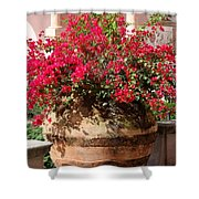 Terracotta Pot Shower Curtain
