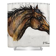 The Bay Horse Shower Curtain