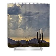 The Beauty Of The Desert  Shower Curtain