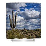 The Beauty Of The Desert Southwest Shower Curtain