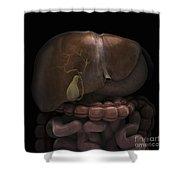 The Gallbladder Shower Curtain