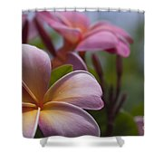 The Garden Of Dreams Shower Curtain